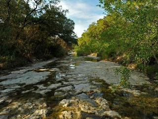 Shoal Creek Conservancy Presents Our Austin Story On Shoal