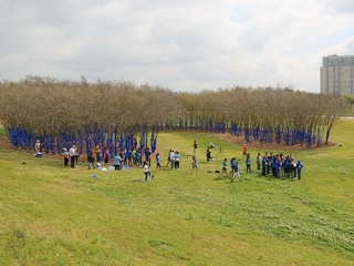 1, Blue trees, March 2013