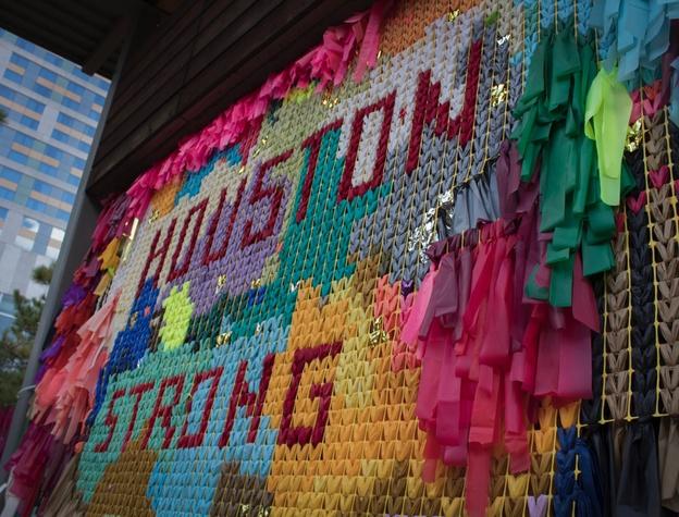MFAH: Eye on Houston, Resilience