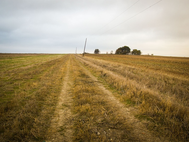 Photo of old, abandoned rural road