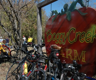 Austin Photo Set: News_Tavaner sullivan_Farm Bike tour_Preview_Dec 2011_boggy creek
