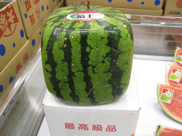 News_Square_Watermelon.jpg