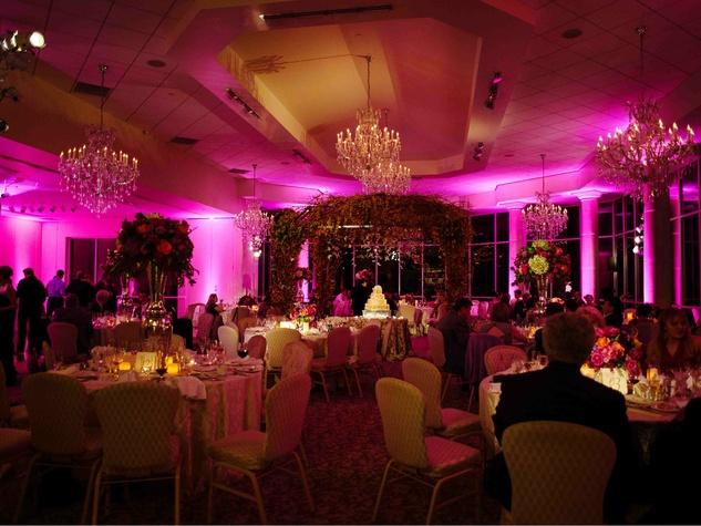 Beyond lighting at Ashton Gardens wedding