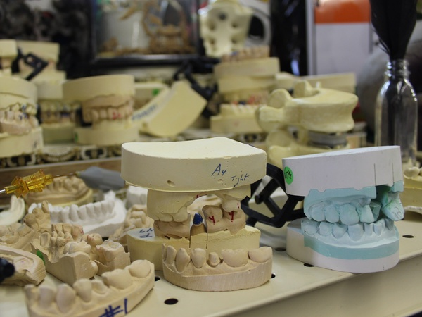 Texas Art Asylum, December 2012, teeth molds, dental molds