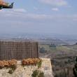 1 San Gimignano