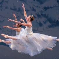 Ballet Austin Nutcracker dancers ballerina 2014