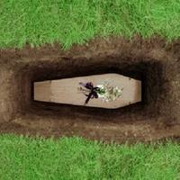 Austin Photo Set: News_sarah_natural burial_april 2012_1