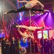 31 Pole acrobats at San Luis Salute March 2014