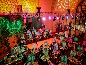 027, Houston Ballet Ball, February 2013, crowd, venue
