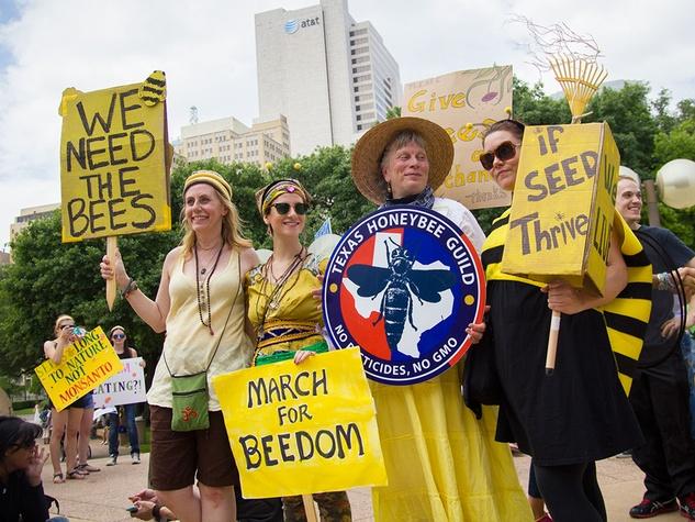 Photo of GMO protesters
