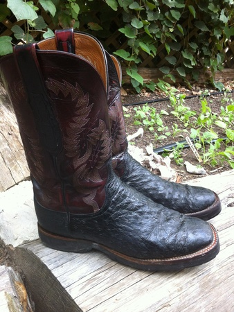 Marene, chef shoes, Randy Evans, cowboy boots, October 2012