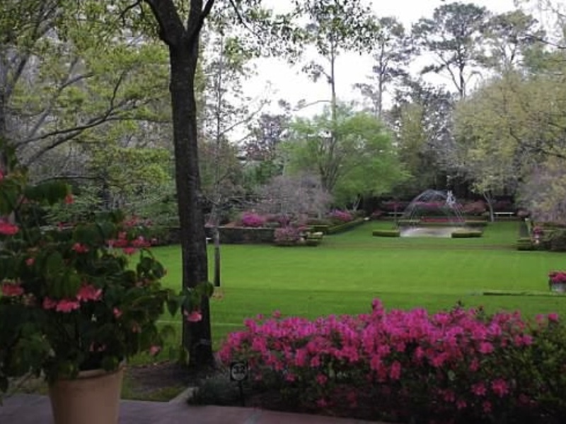 River oaks garden club 39 s azalea trail event culturemap for Garden oaks pool houston