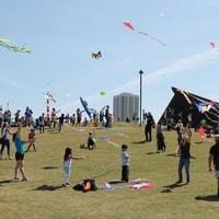 328 Hermann Park Kite Festival March 2014