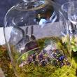 1 Jewels under glass at the Cason-Thrash Bulgari dinner April 2014
