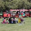320 Hermann Park Kite Festival March 2014