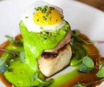 Green Eggs and Ham Searsucker