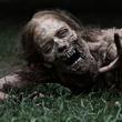 News_The Walking Dead