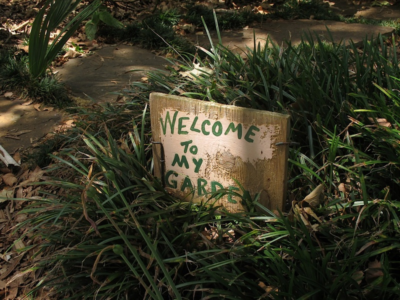 News_Katie_Patsy Cravens_welcome to my garden