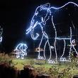 Houston Zoo holiday lights, November 2012