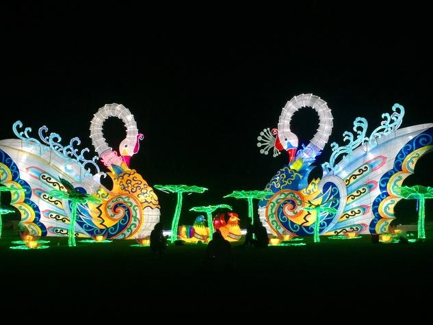 Fair Park presents Holiday Wonder