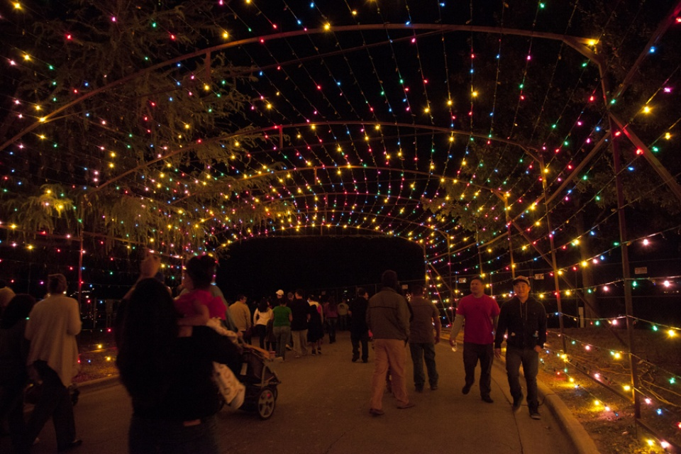Austin Photo Set: Pages_trail of lights_dec 2012_4