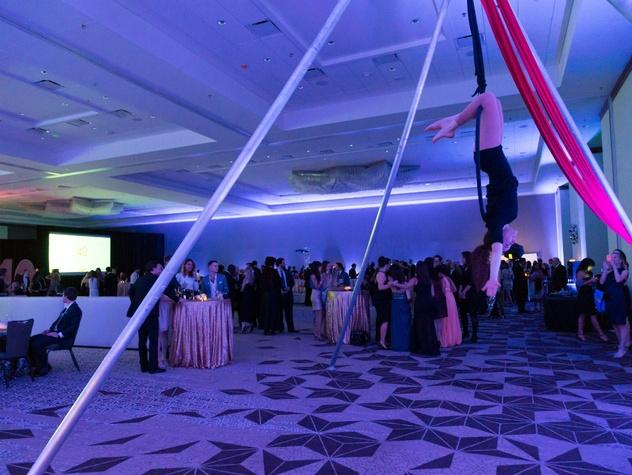 Austin Under 40_Awards Gala_aerial artist_March 2015