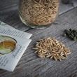 Non-GMO seed