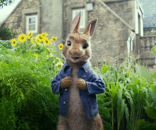 Peter Rabbit (James Corden) in Peter Rabbit