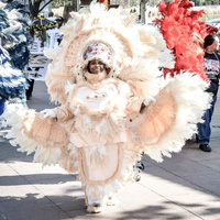 Houston Creole Heritage Festival presents Mardi Gras