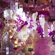Crystal Charity Ball 2014