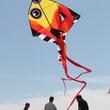 358 Hermann Park Kite Festival March 2014