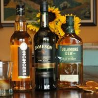Irish Whiskey 2 gingers jameson