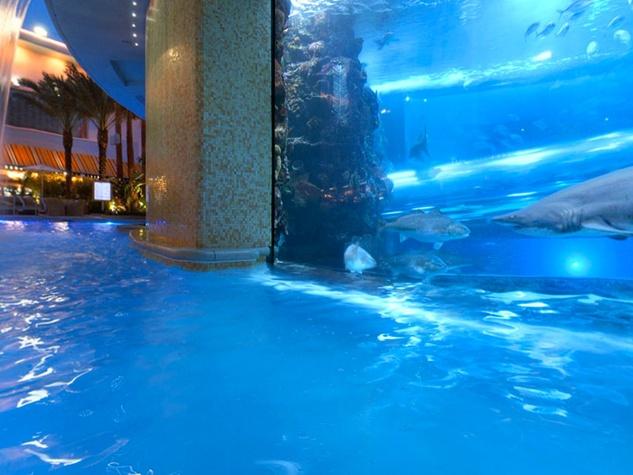 Golden Nugget Las Vegas shark tank by swimming pool