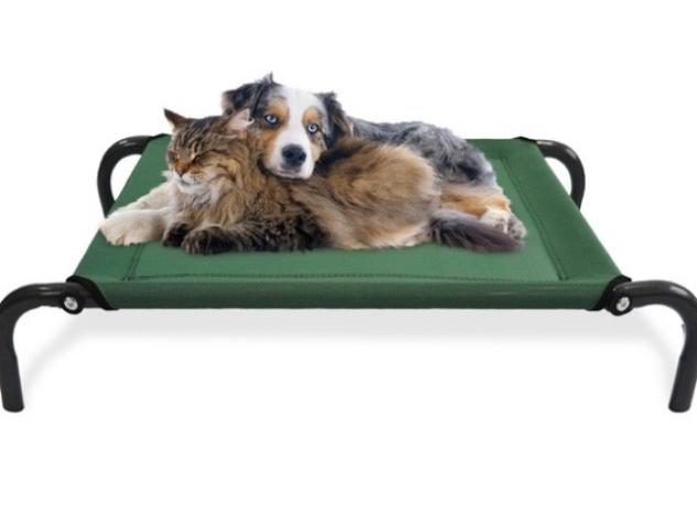 steel-framed raised pet bed on Groupon