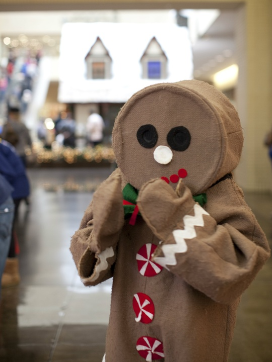 Camp Gingerbread at NorthPark