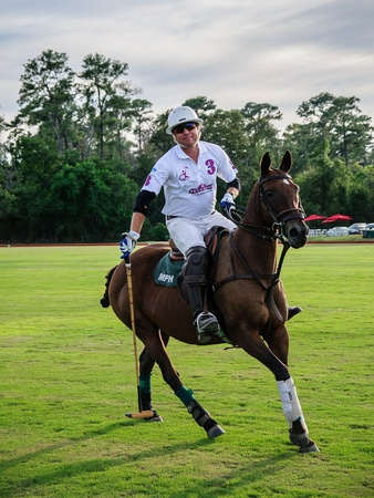 Texas Children's Hospital Polo Classic, Hats & Horses, Bryan Middleton, September 2012, Polo, pony