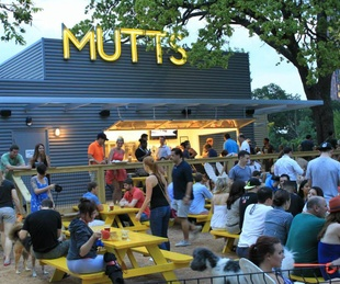 Patio at Mutts Cantina