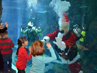 Houston Aquariums present Breakfast with Santa